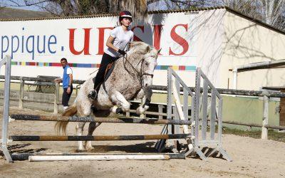 Journées spéciales Sport Equitation